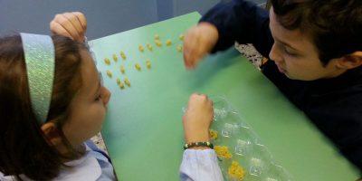 approccio allo studio delle migliaia alla primaria La Zolla