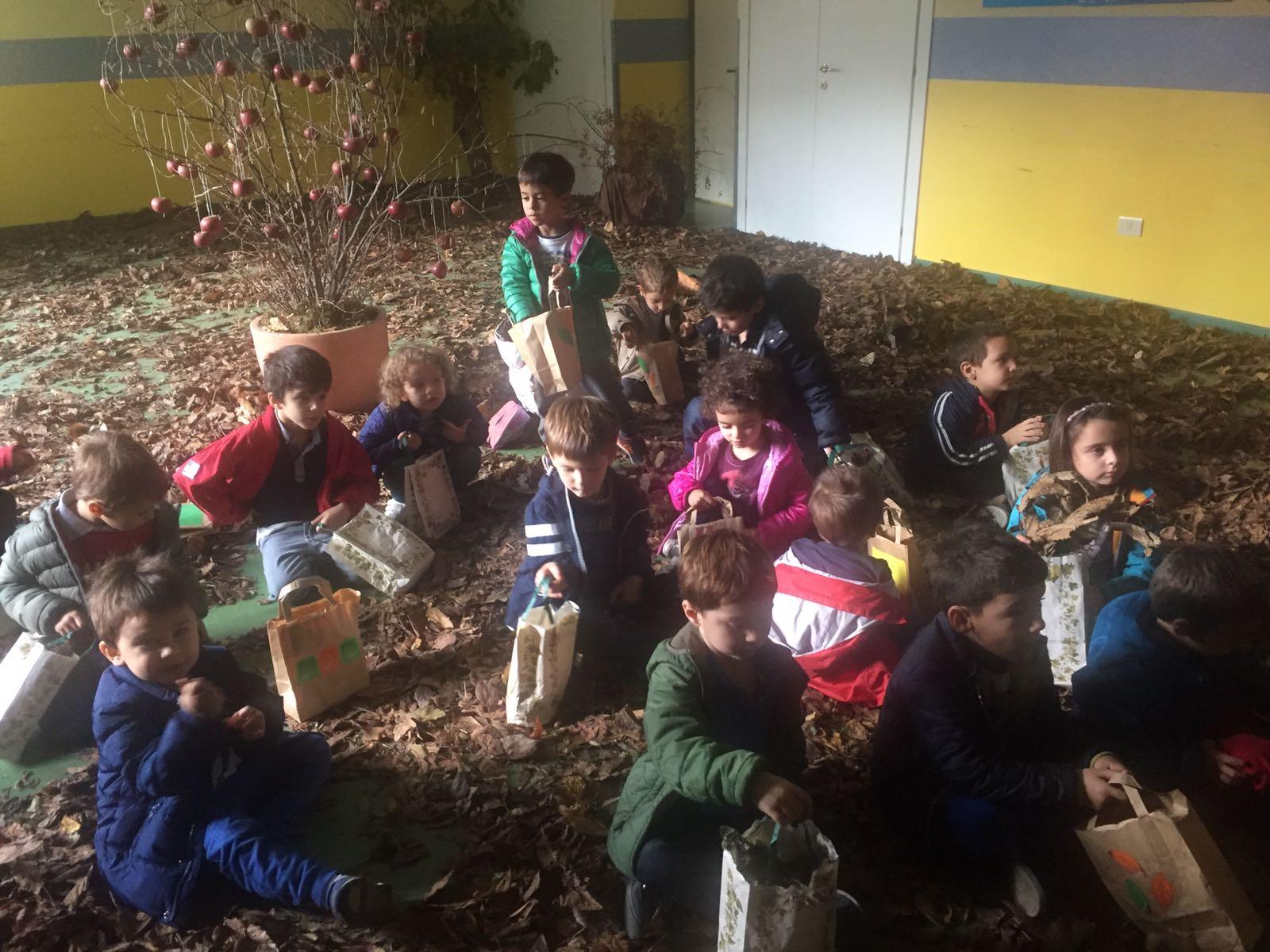 un bosco alla scuola dell'infanzia