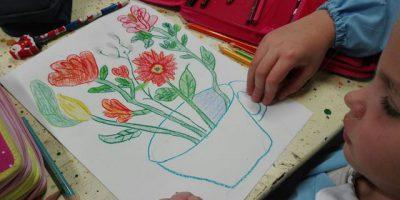 primaria La Zolla, scienze, arte, studio multidisciplinare